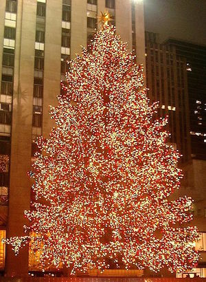 [Christmas Tree at Rockefeller Center]